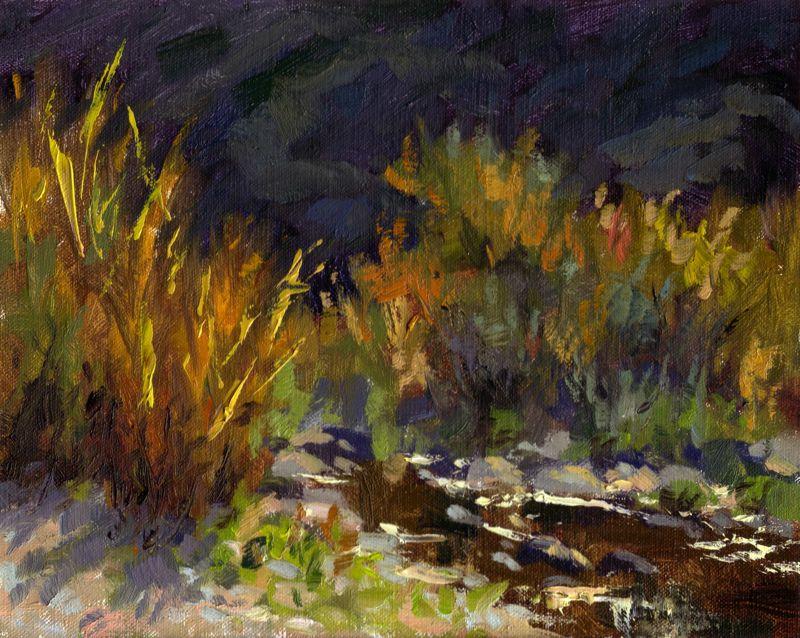 Ventura Riverbed