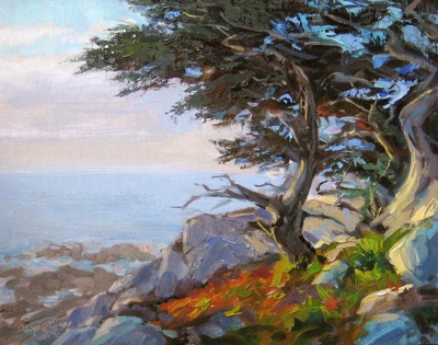 Monterey Cypress, Oil on Linen, 11x15