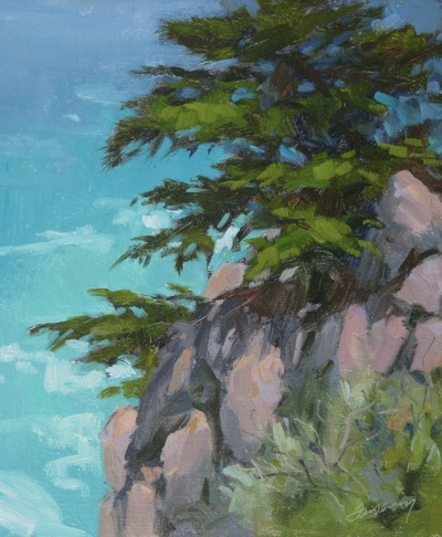 Big Sur, Monterey Cypress - Oil on Linen - 12x10