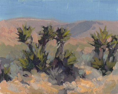Desert Color Study