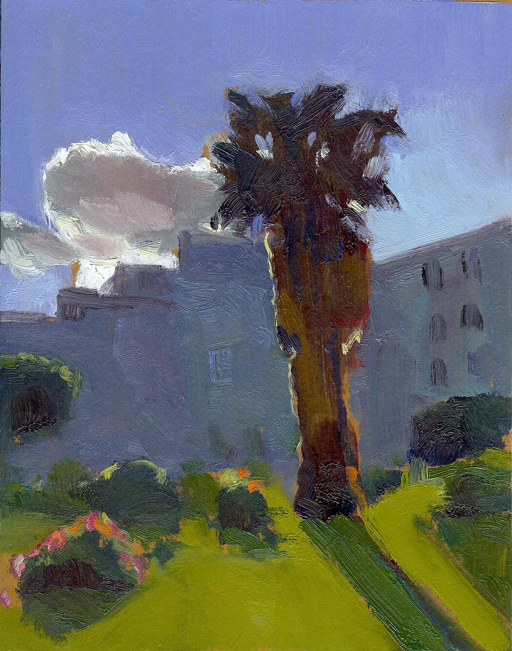 Dolores Park Palm